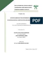 TESIS+YA+AL+1.pdf