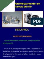 10-Segurança.pdf