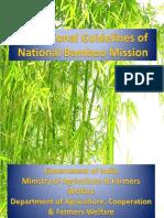 NBM_Guidelines_New.pdf