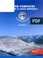 T.M. Porter (editor) - Super Porphyry Copper and Gold Deposits_ A Global Perspective. 2-PGC Publishing (2005).pdf