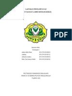LP BBLR Kelompok 1.docx