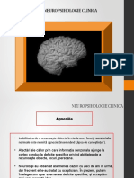 Neuropsihologie clinica curs 10.pptx · versiunea 1