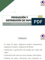 PRODUCCION Y DISTRIBUCION DE VAPOR