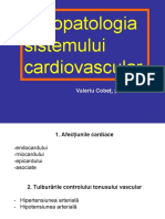 FP cardiovasculară