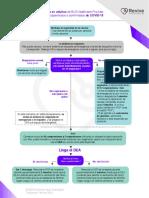 Guías actualizadas COVID-19