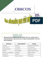 TIPOS DE CLASES-AEROBICAS