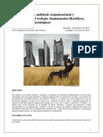Administración, ambiente organizacional y satisfaccion
