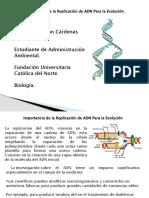 Importancia de la Replicacion del ADN