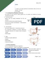 T- Cancro do tubo digestivo