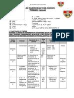 Plan de trabajo Remoto Limachi.docx