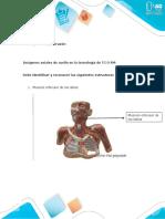 Cuestionario - Unidad 2. Tarea 4 - Cuello, Tórax y Corazón.docx