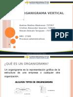 Organigrama vertical.pptx