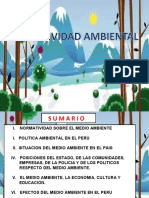 ANÁLISIS AMBIENTAL.ppt