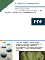 ps_oradea_6.ppt