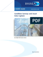 Condition Surveys and Asset Data Capture _ Sample.pdf