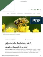 ¿Qué es la Polinización_