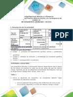 Formato Guia de Componente práctico actividad alterna (1)