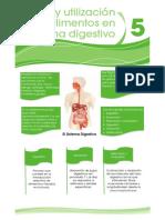 resumen_05.pdf