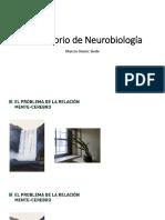 C1 Laboratorio de Neurobiología-lab1.pdf