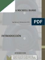 Conferencia 20 TURBINA  BANKI.pdf