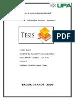 tesis-1