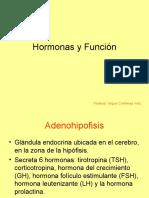 Hormonas y su funcion.ppt