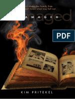 445821125-K-P-Danado.pdf