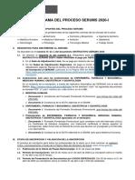 minsa-cronograma-serums-2020-1-v7 (2).pdf