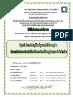 biogazz.pdf