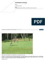 Моделирование низкополигонного кенгуру