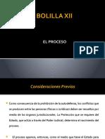 BOLILLA XII - EL PROCESO.pptx