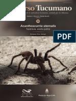 Acanthoscurria sternalis - Tarántula