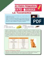 La-Taxonomía-para-Sexto-de-Primaria
