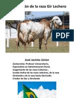 GIR LECHERO Jose Jacinto Junior