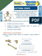 El-Sistema-Óseo-para-Tercer-Grado-de-Primaria