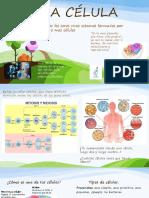 La célula Unidad de vida Diapositivas