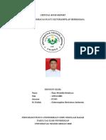 Critical Book Report b.indo
