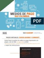 MEDIOS DE PAGO ACADEMY 2019-1pdf.pdf