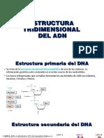 Ácidos Nucleicos ffrv2
