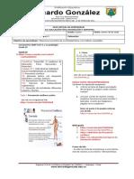FORMATO SUGERIDO GUÍA DE APRENDIZAJE RICARDISTA 4°.pdf