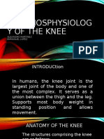 MORPHOSPHYSIOLOGY OF THE KNEE
