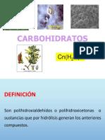 CARBOHIDRATOS II.pdf
