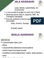 FI_Boala KAWASAKI