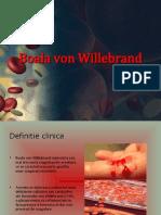 Boala-Von-Willebrand-II.ppt