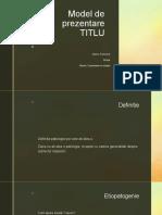 Model de prezentare.pptx