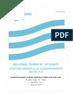 AUDITORIA AMBIENTAL DE ACOMPANHAMENTO.pdf