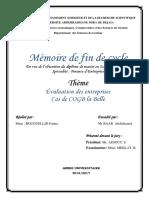 Evaluation Des Entreprises Cas de COGB La Belle