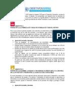Tema 4. Objtivos de la Agenda 2030 para transformar nuestro mundo..docx