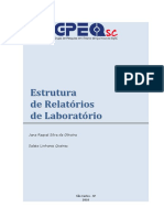 Manual Relatorio de Laboratorio.pdf