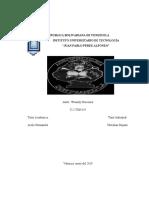 informe de pasantias (Autoguardado)